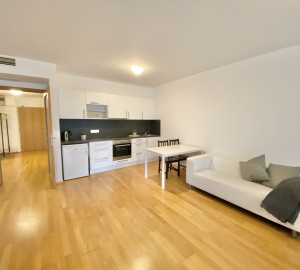 Rent flat 1+kk, 53 m2 - Ke Kapslovně, Prague 3
