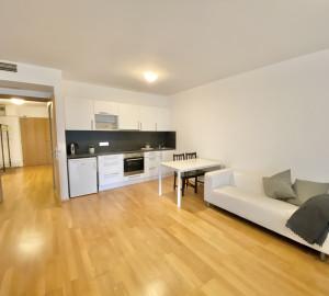 Pronájem bytu 1+kk, 53 m2 - Ke Kapslovně, Praha 3