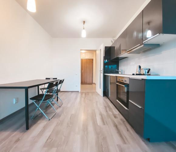 Rent flat 2+kk, 54 m2 - Olgy Havlové, Prague 3
