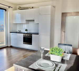 Rent flat 1+kk, 40 m2 - Mantovská, Prague-East