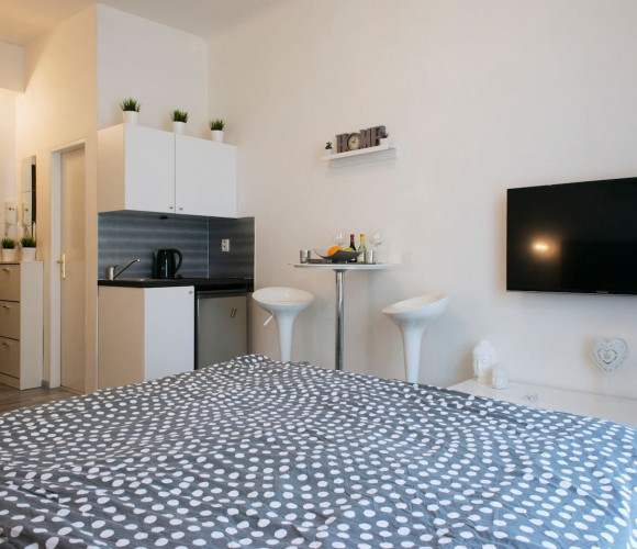 Rent flat 1+kk, 21 m2 - Seifertova, Prague 3