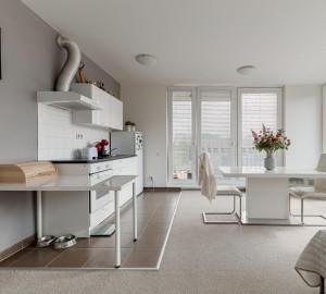 Продажа квартиры 2+kk, 59 m2 - Olgy Havlové, Прага 3